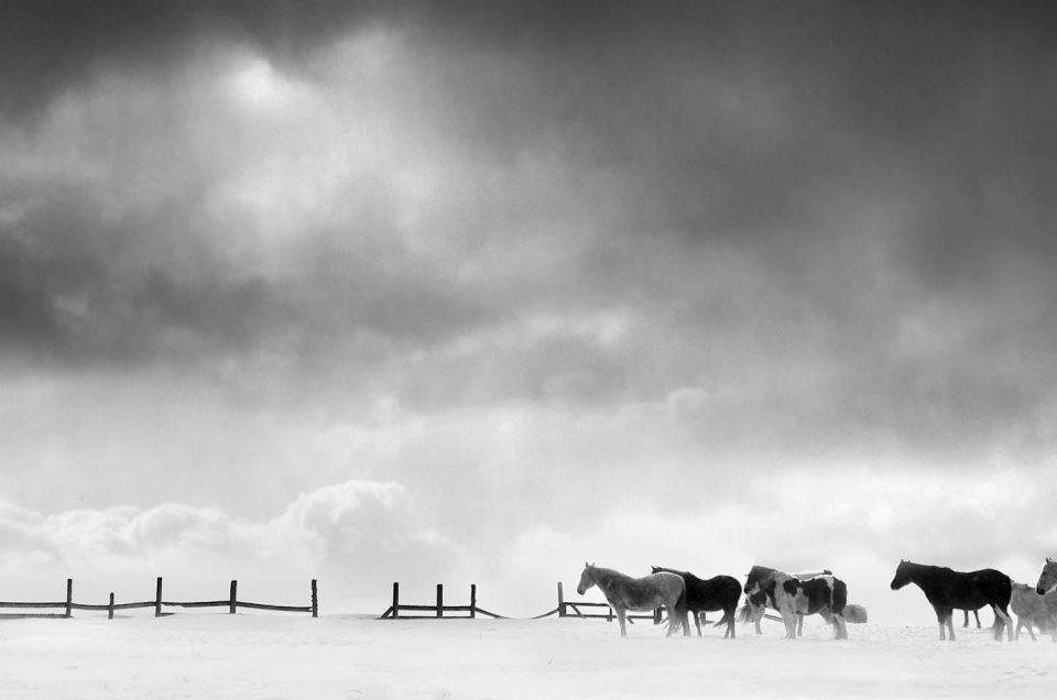 Chris Clor – Minimal Black and White